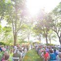 Summer, garden wedding ceremony