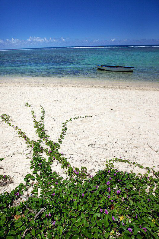 Best Honeymoon Locations by Month - Mauritius
