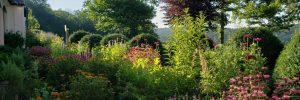 Drumore's pollinator garden for Butterflies